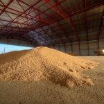 Совместное российско-китайское предприятие создает в Приморском крае агропромышленный кластер