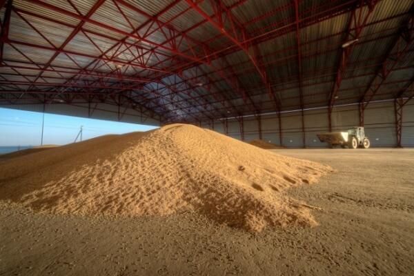 В Приморье строится крупный агрокластер