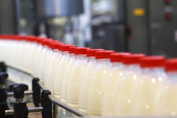 Молочная отрасль России нуждается в изменениях законодательства