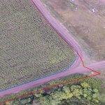 В Нарофоминском районе Московской области внедряется  геоинформационная система управления сельским хозяйством