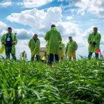 Аграрные вузы России планируют объединить в агропромышленные кластеры