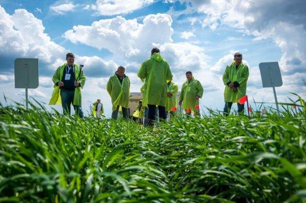 Сельскохозяйственные вузы смогут объединитьв единые кластеры