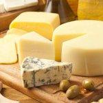 Французские сыроделы намерены создать в Подмосковье школу сыроварения
