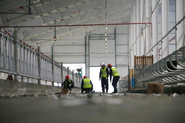 На САхалине строится крупнейшая на Дальнем Востоке животноводческая ферма