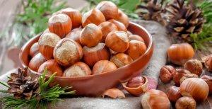 В Абхазии плоды лещины губит мраморный клоп