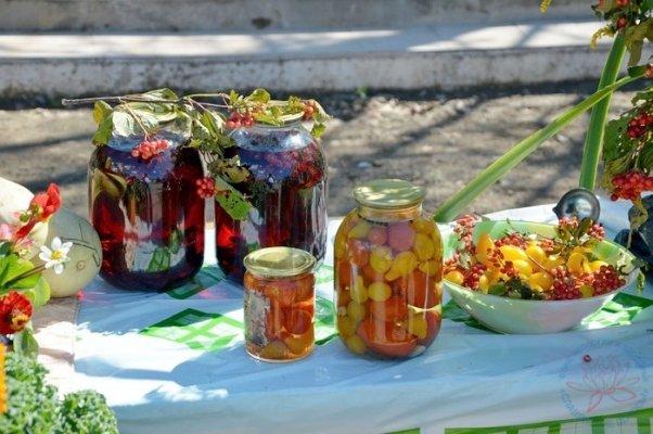 В Иркутской области МИнсельхоз изменил механизм предоставления грантов