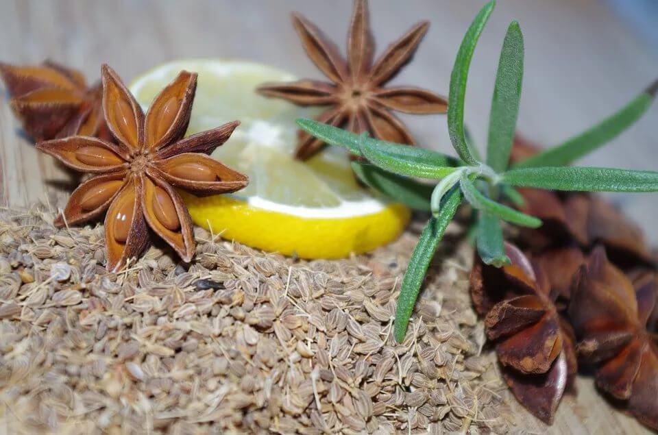 Семена разных сортов аниса