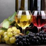 Вино ставропольского фермера получило одобрение французских экспертов