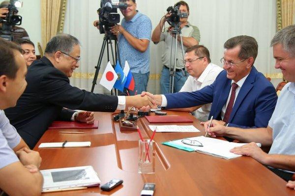 Российско-японское производство по переработке корня солодки зпвершается в Архангельской области