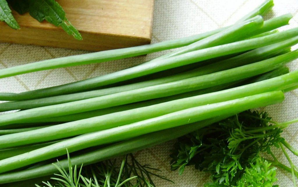 Зелень многоярусного лука