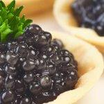 Ученые Ростовского научного центра нашли способ увеличения объема черной икры