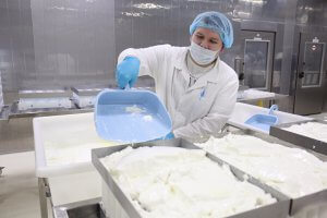 На Урале начали производить сыр из козьего молока по французской технологии