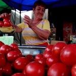 Сотрудники  Россельхознадзора посетили азербайджанские теплицы