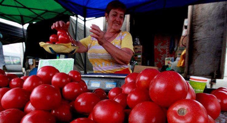 Россельхоз провенрил азербайджанские теплицы