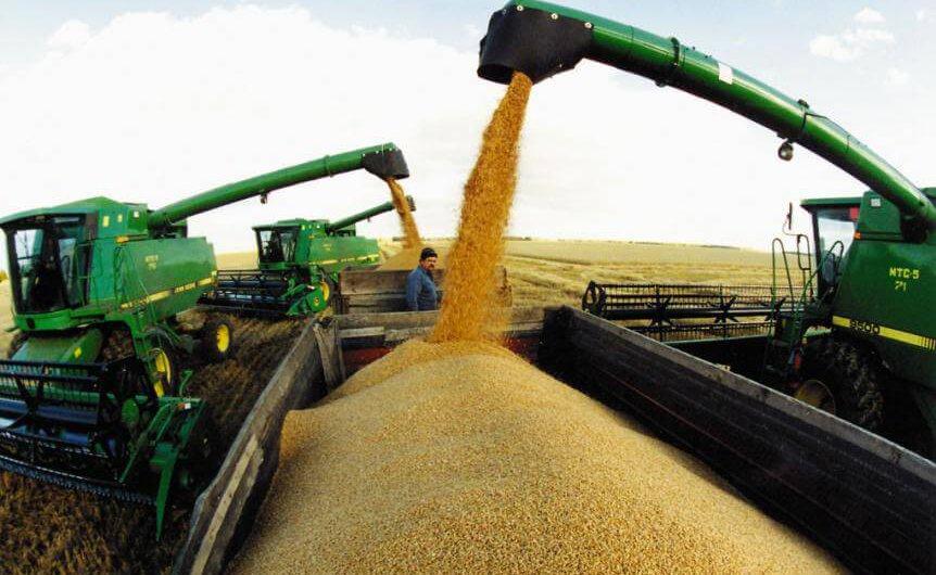 Погрузка и транспортировка зерна