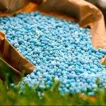 В Татарстане начинается строительство современного завода по производству удобрений