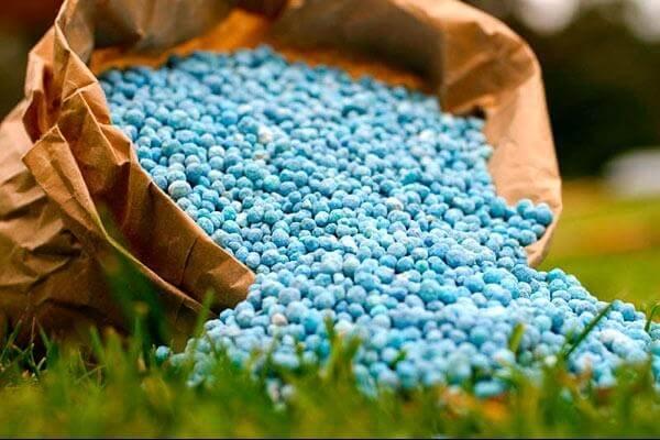 Dтатрстане будт строиться завод минеральных удобрений