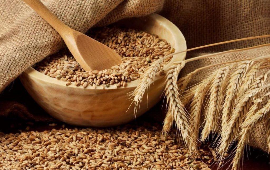 Зерна пшеницы в глиняной посуде
