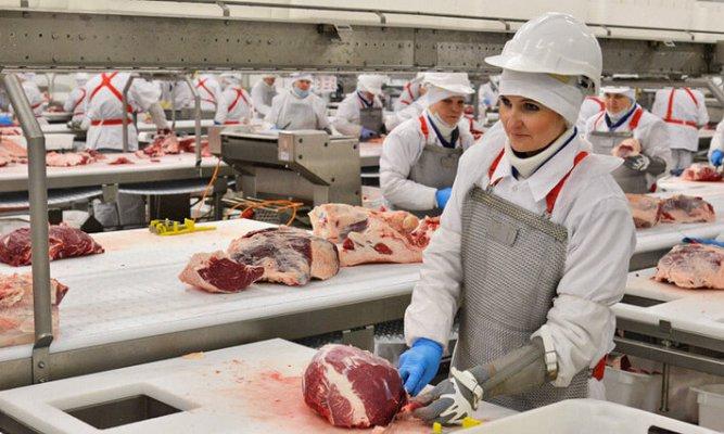 В ТОмской области строится мясоперерабатывающий комплекс