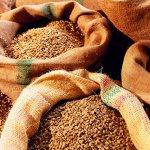 Поставки российской сельскохозяйственной продукции в Иорданию увеличатся