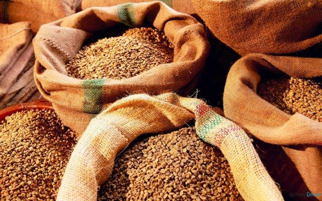 Россия наращивает объемы экспорта сельхозпродуктов в Иорданию