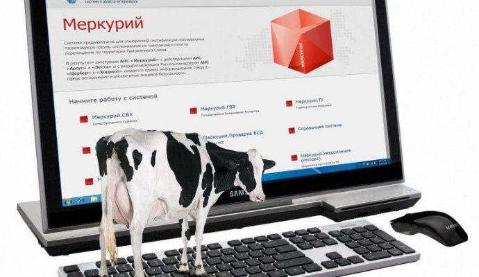 ФГИС Меркурий активно внедряется в Новосибирской области