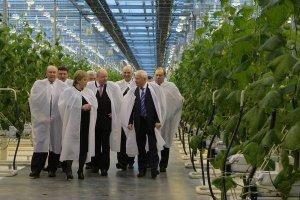 ТОмская область продолдает сотрудничество с Королевством Нидерланды