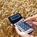 Квоту на льготные кредиты будут распределять региональные аграрные ведомства