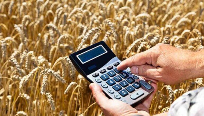Льгттные кредиты будут рапсределять в региональных Минсельхозах