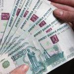 На Алтае уже в январе начнут выплату погектарной субсидии