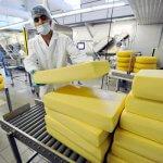 Итальянцы инвестируют свои средства в АПК  Калмыкии