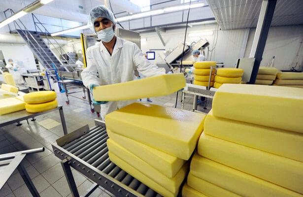 В Калмыкии создана совместная итало-калмыцкая сыроварня