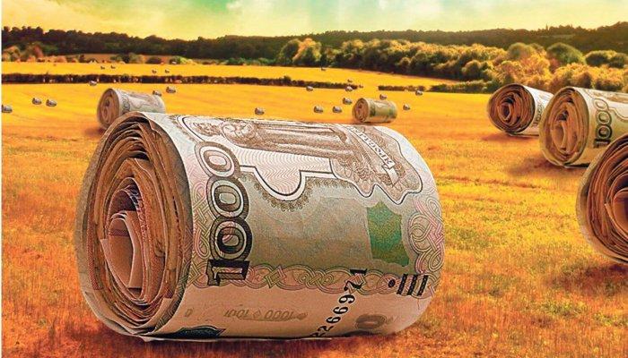 ПРограмма агрострахования в России срывается
