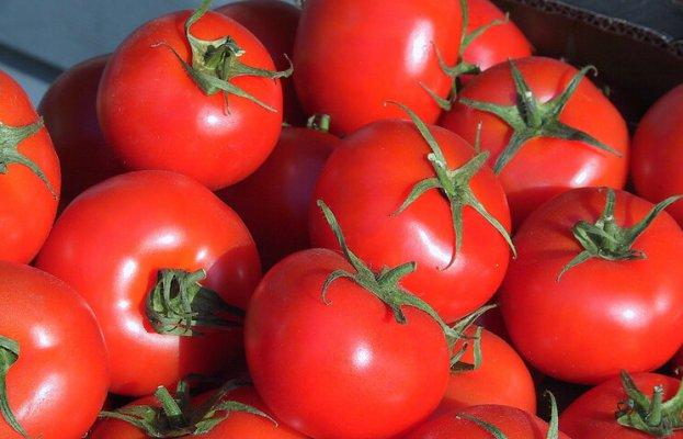 овощи можно будет выращивать круглый год в мобильном фитокомплексе