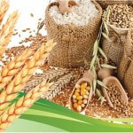 В Госдуме решают вопрос страхования перепроизводства в сельском хозяйстве