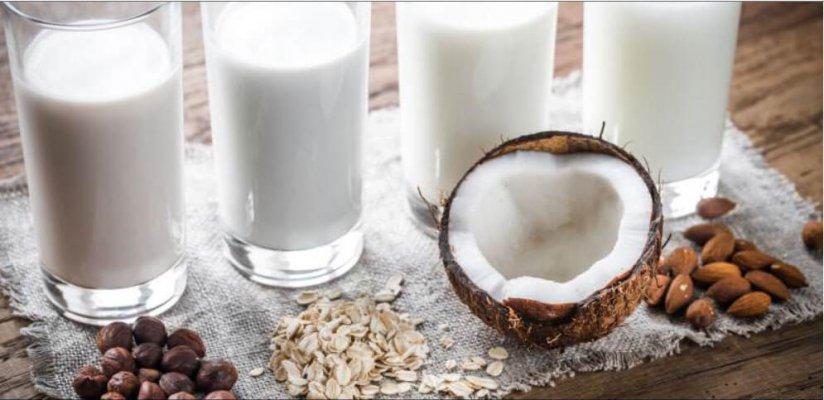 В Челябинской области начали производство молочных продуктов из растительного сырья