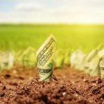 Собственникам сельскохозяйственных земель могут повысить налог