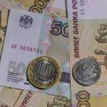 Законодатели Омской области освободили от уплаты налогов производителей пива и свинины