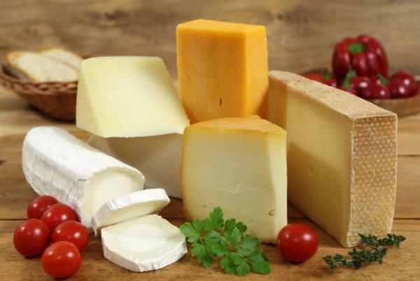 Агрохолдинг им. Ткачева начинает проихводство сыров под брендом Сыры Кубани