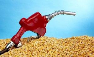 Вместо спирта биотопливо