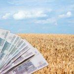Расширен список направлений для льготных кредитов