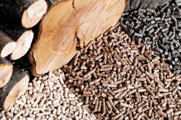 В Архангельске производят удобрения их отходов древесины и промышленных стоков АЦБК