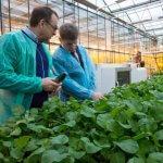 Агротуристические проекты сахалинцев получили высокую оценку комиссии АСИ