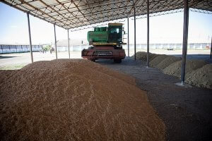 В ЧЕлябинской области будет построен агрологистический хаб