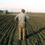 В республике Северная Осетия Алания землю сельхозпроизводителям дают на условиях аренды