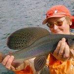 В Иркутске создали гибриды байкальских рыб