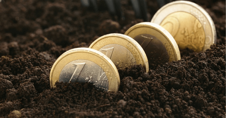 Российские фермеры не могут воспользоваться погектарной поддержкой