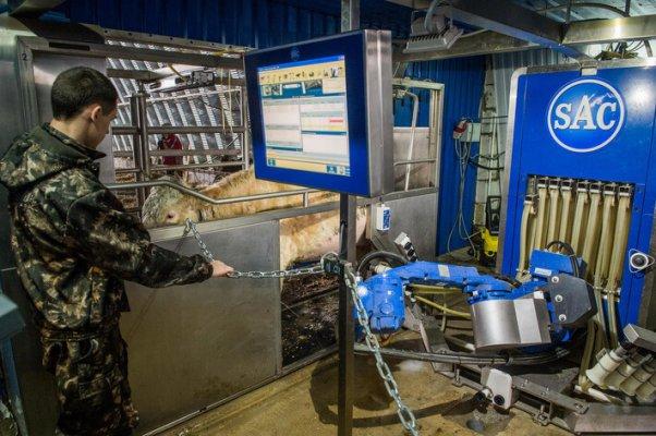 36 по счету ферма роботизирована в Калужской области