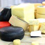 В Ленинградской области увеличивают производство элитного сыра