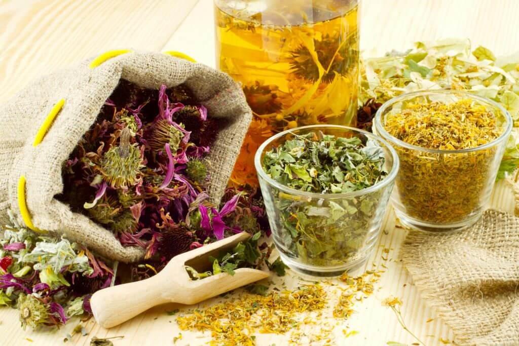 Сушеные лекарственные травы и их хранение